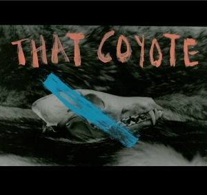 that-coyote